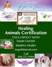 Animal Healing Certification