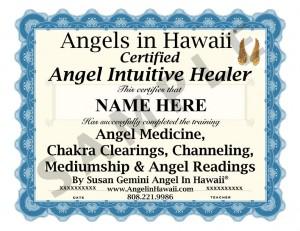 2013 angel  healer cert